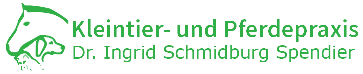 Kleintier und Pferdepraxis Dr. Schmidburg